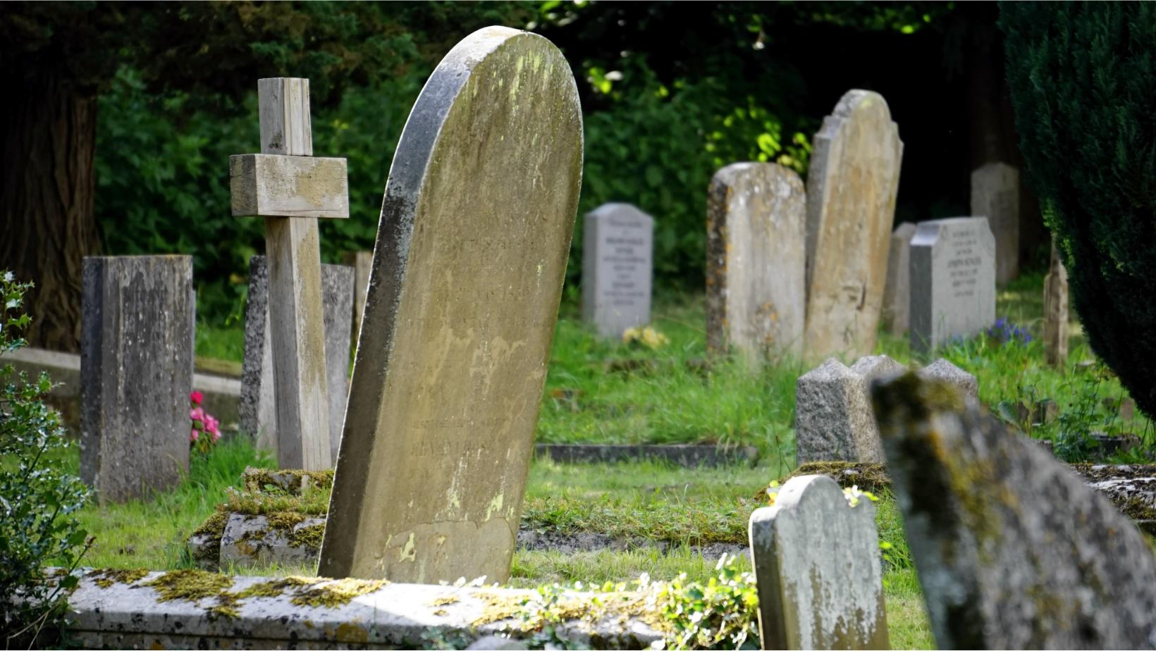 Lee más sobre el artículo Noche en el cementerio (segunda parte)