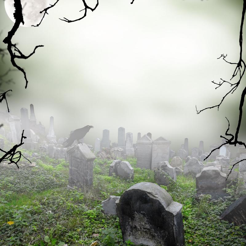 Lee más sobre el artículo Noche en el cementerio